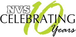 NVS @10 - Celebrating 10 Years of Intellectual Stimulation & Activism